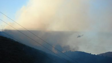 Photo of Large forest fire raging in Greek peninsula Sithonia