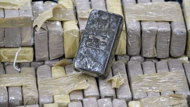 Photo of Police bust international drug ring in Ohrid, seize 100kg of hashish