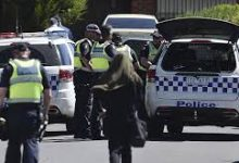 Photo of Police raid on Australian public broadcaster was valid, court rules
