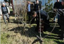Photo of PM Spasovski to attend vine pruning event in Tikvesh region