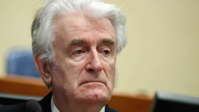 Photo of UN court to rule on appeal of Serb Karadzic's genocide conviction