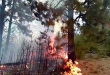 Photo of Army sends helicopter to put out wildfire near Galichnik