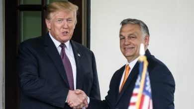 Photo of White House visit: Orban, Trump strike similar tone on migration