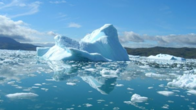 Photo of Melting ice sheet in Greenland raises sea level by 11 millimetres
