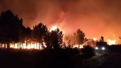 Photo of Blaze at Croatian island of Pag contained