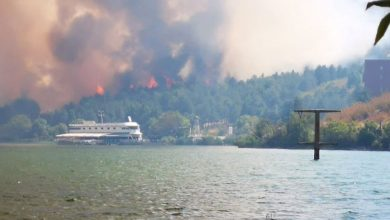 Photo of Firefighters extinguish Lake Mladost fire near Veles