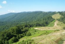 Photo of Environment ministry launches campaign to declare Osogovo Mountains a protected area