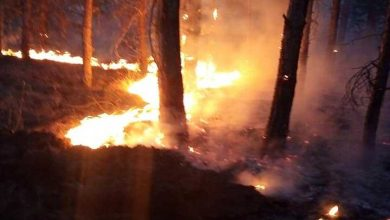 Photo of Four arrested on suspicion of causing fire near Veles