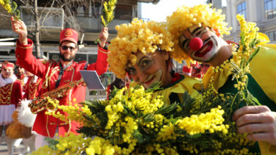 Photo of 51st Mimosa Festival
