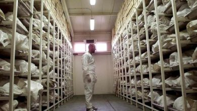 Photo of About 4,000 war crimes suspects in Bosnia still awaiting trial