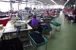 Photo of Industrial production in June down 15.1 pct: statistics