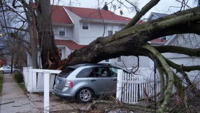 Photo of Storm leaves tens of thousands of Czech homes without power