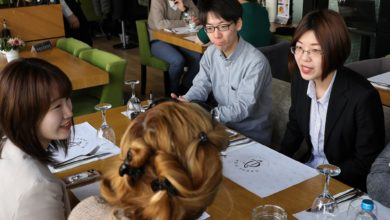 Photo of Postgraduate students from Japan on a study visit to North Macedonia