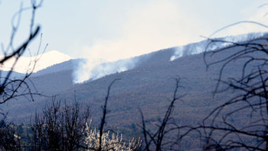 Photo of Forest fire in times of COVID-19