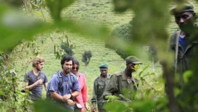 Photo of Rangers killed in attack near Congo park known for gorillas