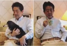 Photo of Japanese PM's 'stay home' message attracts angry reactions
