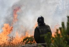 Photo of Environmentalists say only rain can help put out Russian wildfires