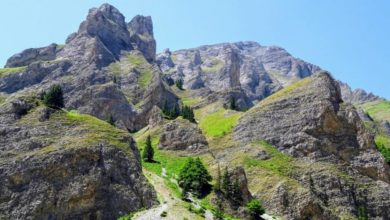 Photo of Shar Mountain to be declared national park based on valorization study