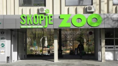 Photo of Skopje Zoo reopens Tuesday, visitors to abide by coronavirus measures