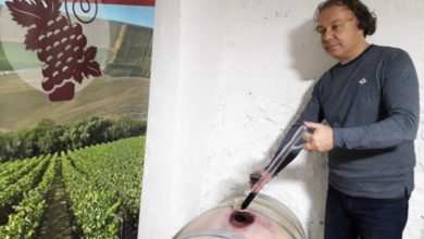Photo of Jakovlevski: Family wineries can finally build their own brands
