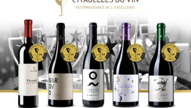 Photo of Tikvesh wines win prizes at French contest