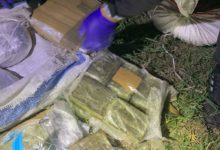 Photo of Police seize almost 50 kg of hashish, marijuana near Prilep