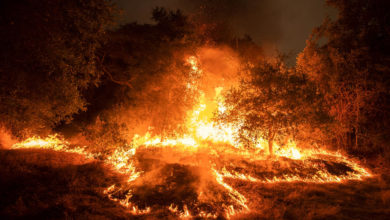 Photo of At least 33 dead from US fires since mid-August