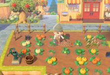 "Photo of Оксфорд: Видеоигрите ""Animal Crossing"" и ""Plants vs Zombies"" нѐ прават посреќни"