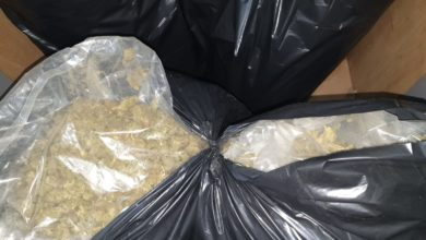 Photo of Police bust two international drug trafficking rings, seize over half a ton of marijuana