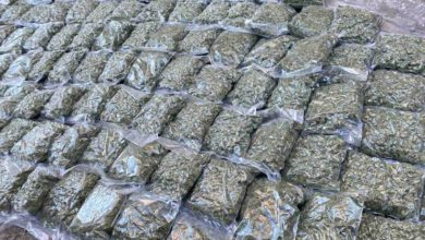 Photo of Police arrest six suspected drug dealers, seize 200 kg marijuana and illegal weapons