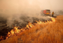 Photo of Spasovski: We can prevent wildfires together