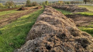 """Photo of Piles of agricultural waste in Strumica region can be turned into """"black gold"""" through composting"""